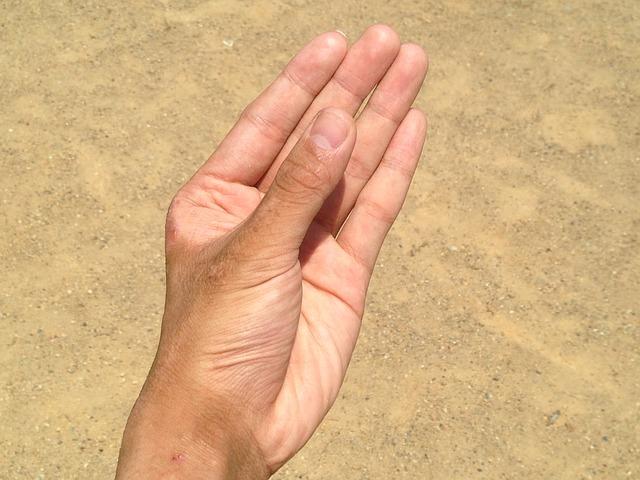 pánská dlaň