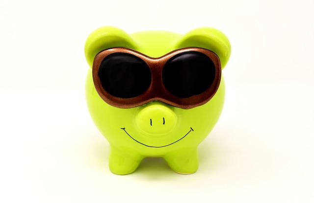 prasátko a sluneční brýle.jpg