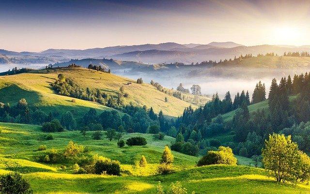 mlha mezi kopci
